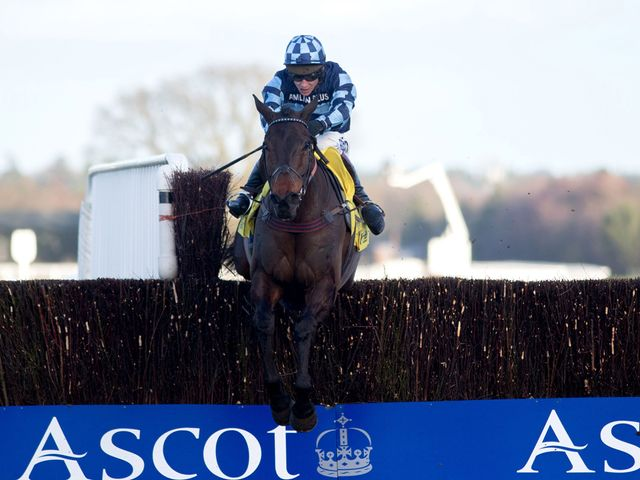Captain Chris comes home alone at Ascot
