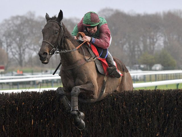 Rigadin de Beauchene: Landed the Grand National Trial