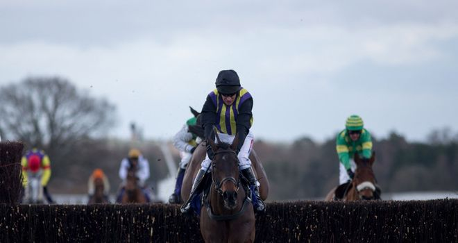 O'Faolain's Boy clears the last on his way to victory