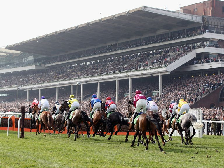 Cheltenham: Track in good shape ahead of Festival