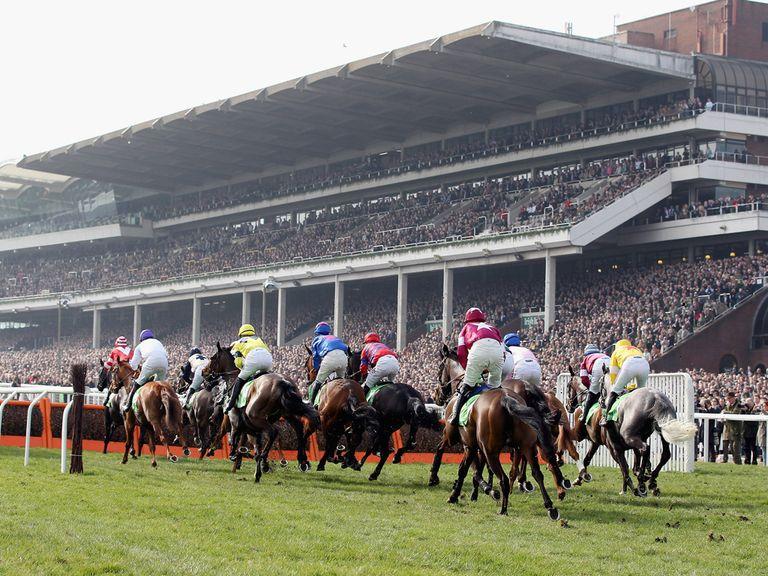 Cheltenham: Track in good shape ahead of Festival
