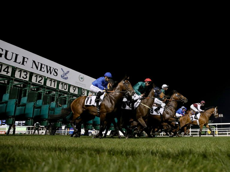 Meydan: Will replace the Tapeta surface with dirt