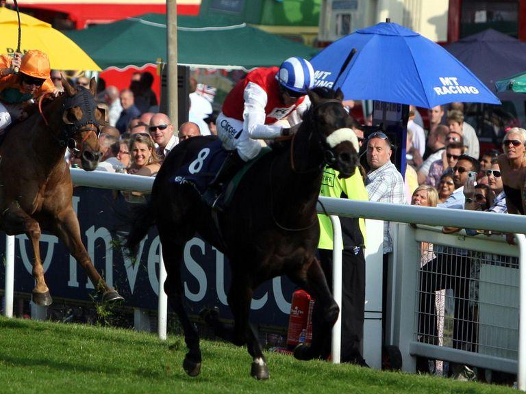 Swiss Cross: Can win at Wolverhampton
