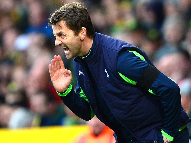 Tim Sherwood: Wants time to prove himself