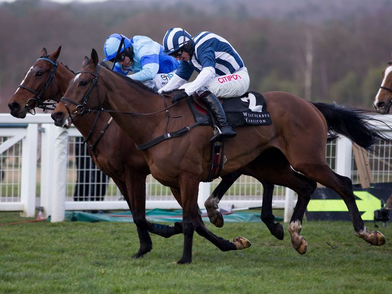 Teaforthree: One of the leading fancies for the Crabbie's Grand National