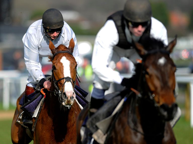 Sire De Grugy: tracks his work companion at Plumpton