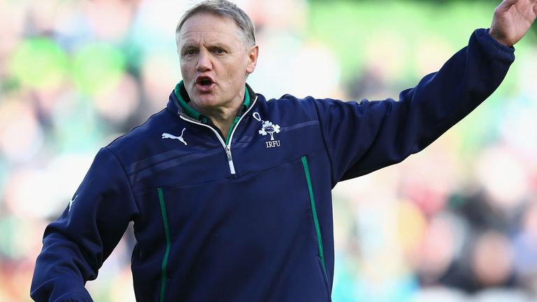 Joe Schmidt: Disappointed with performance despite series win