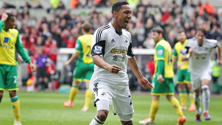 Jonathan de Guzman: Could stay at Swansea