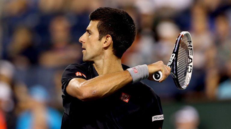 Novak Djokovic beat Victor Hanescu in straight sets