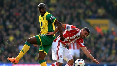Sebastien Bassong: Still has a future at Norwich, according to Neil Adams
