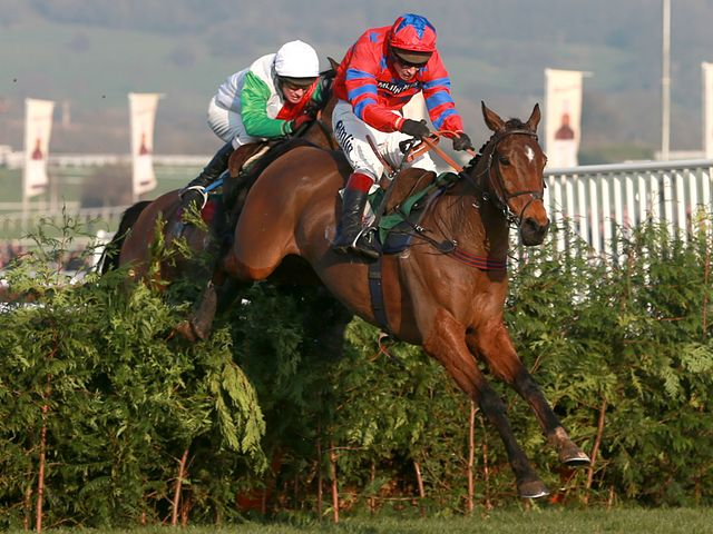 Balthazar King won the cross-country event again