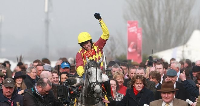 Dynaste: Won the Ryanair Chase at Cheltenham Festival