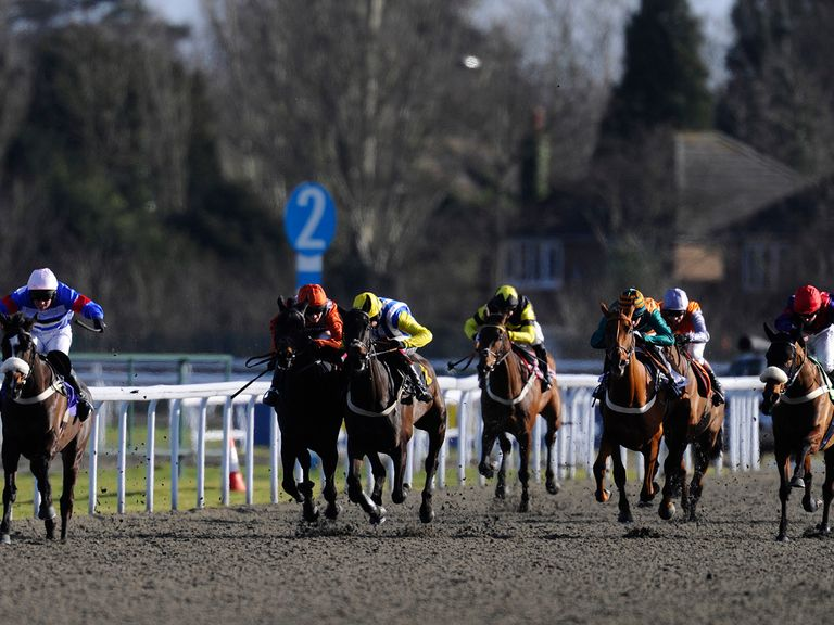 Kempton on the all-weather is where the best bet runs