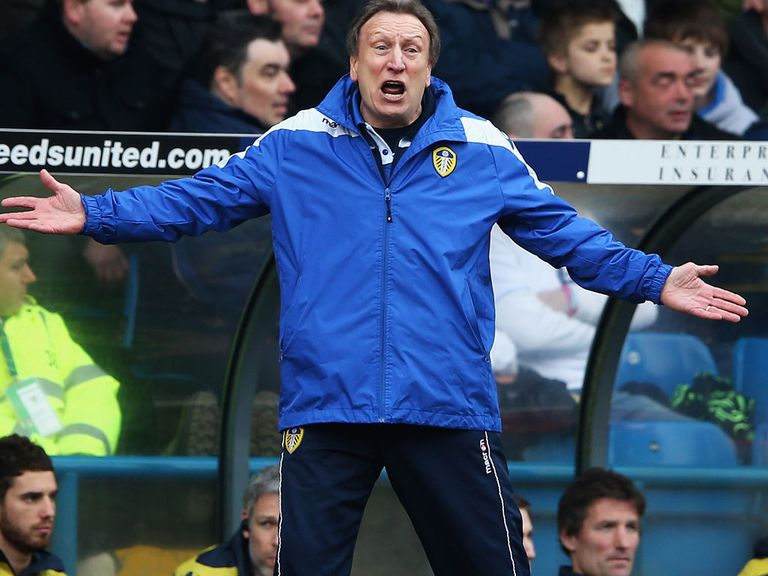 Neil Warnock: Tipped to be the next Crystal Palace manager