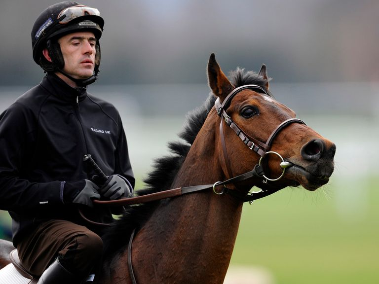 Ruby Walsh partners Hurricane Fly at work
