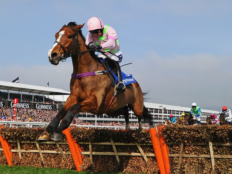 Faugheen: One of the Price Boosts at Punchestown