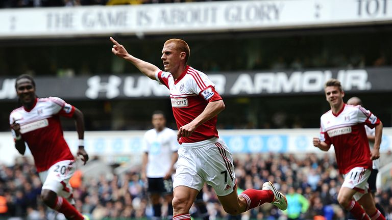 Steve Sidwell: Will become a free agent this summer