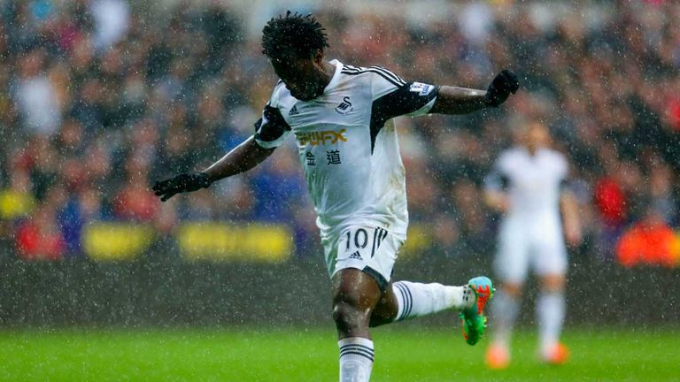 Wilfried Bony: Ivory Coast striker has been a success since joining Swansea