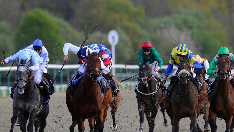 Grandeur (l) ran a big race at Belmont on Saturday