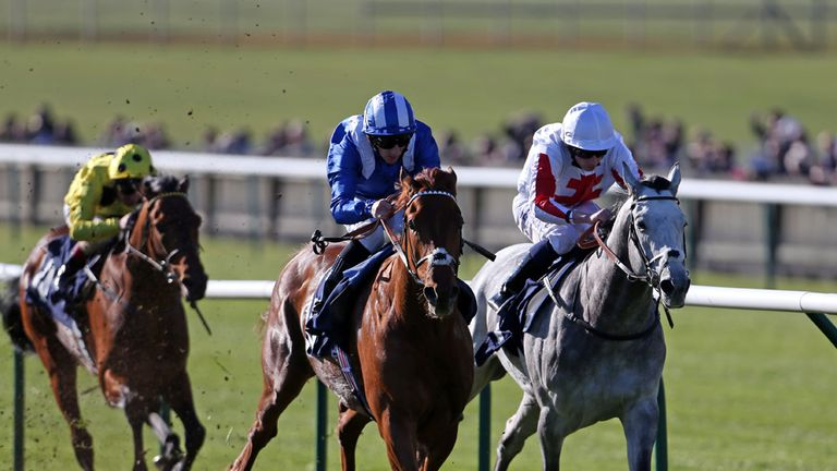 Munjaz could run in the Lingfield Derby Trial