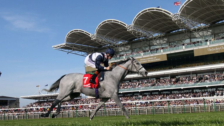 Sky Lantern: Among the Matron Stakes entries