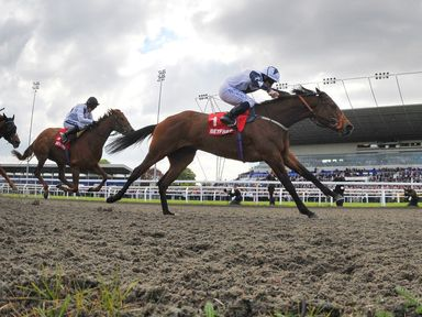 Zurigha ridden by Ryan Moore wins the Betfred Mobile Lotto Snowdrop Fillies' Stakes at Kempton