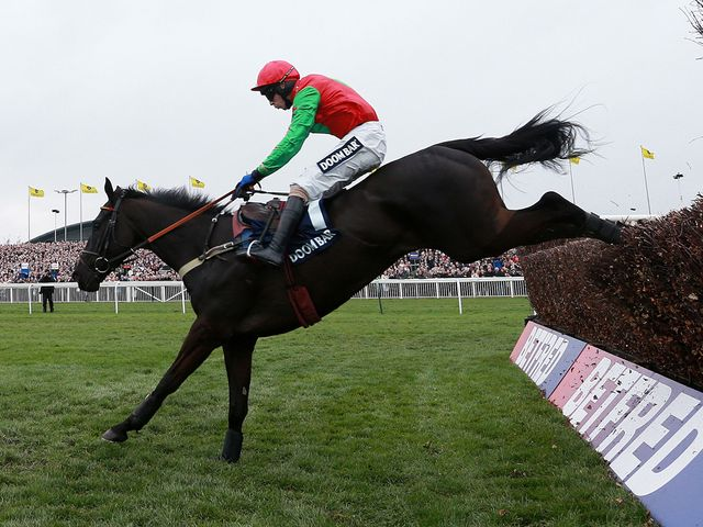 Balder Succes jumps to victory under Wayne Hutchinson