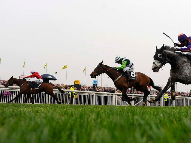 The New One beats Rock On Ruby and Diakali in an Aintree thriller