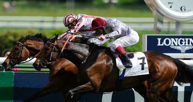 Cirrus Des Aigles could take in a fourth Champion Stakes