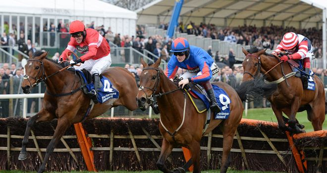 Lac Fontana leads Splash Of Ginge home at Aintree