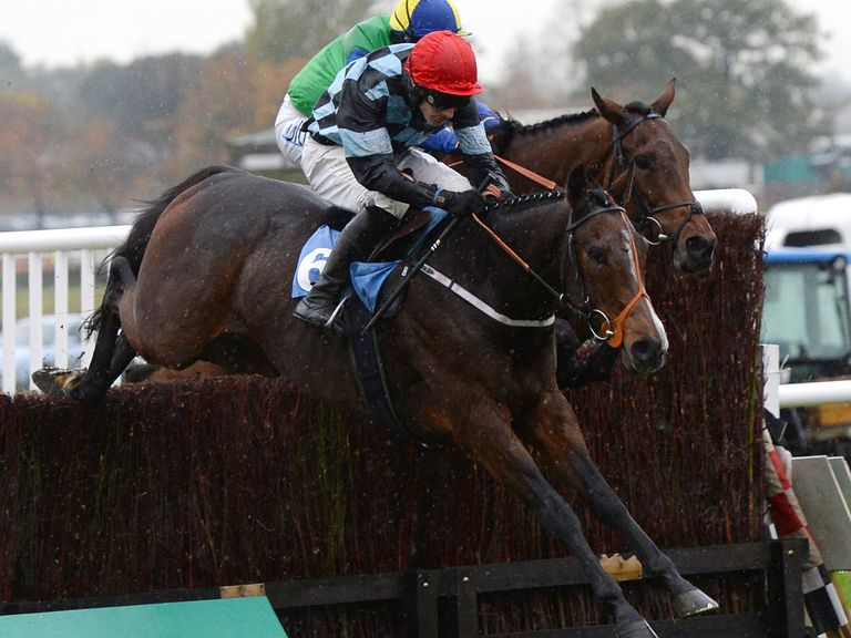 Ultimate: Worth a punt on his return to hurdling