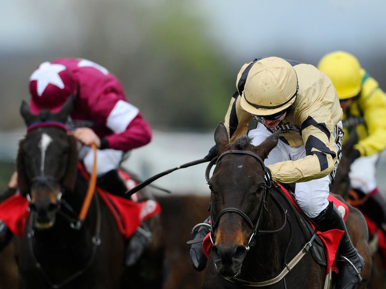 Boston Bob: Punchestown hopeful
