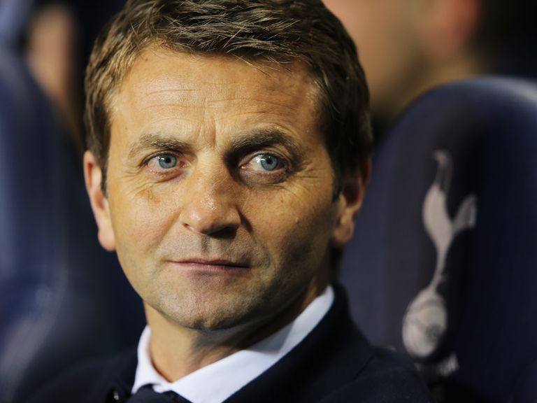 Tim Sherwood: Keen to get back into management
