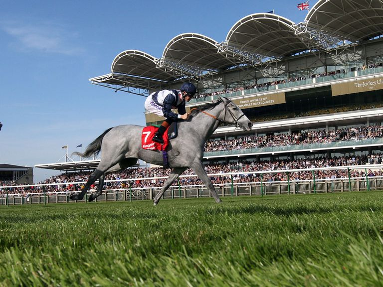 Sky Lantern can atone for last year's 'unlucky' defeat in the Falmouth