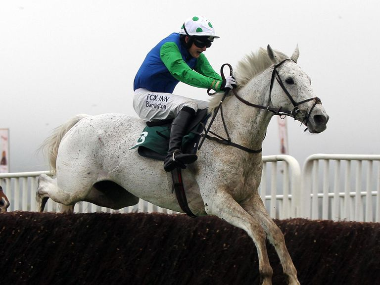 Swing Bill: The final horse to make the cut for the Crabbie's Grand National