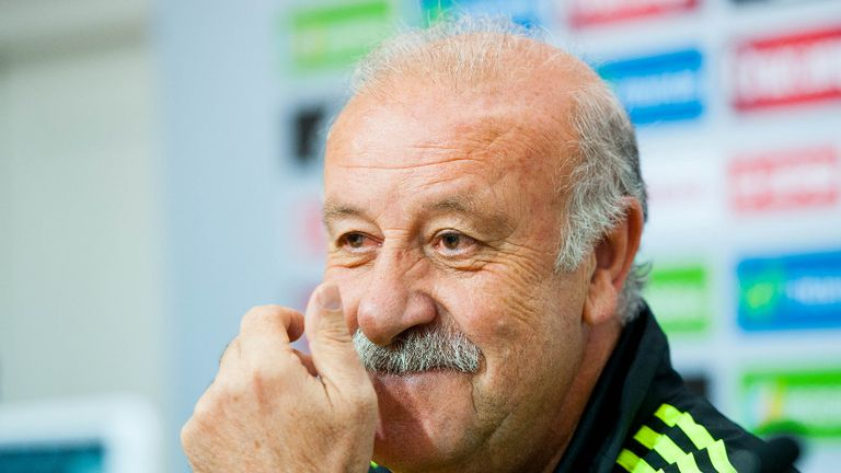 Vicente del Bosque: Spain coach has a stable squad for the World Cup