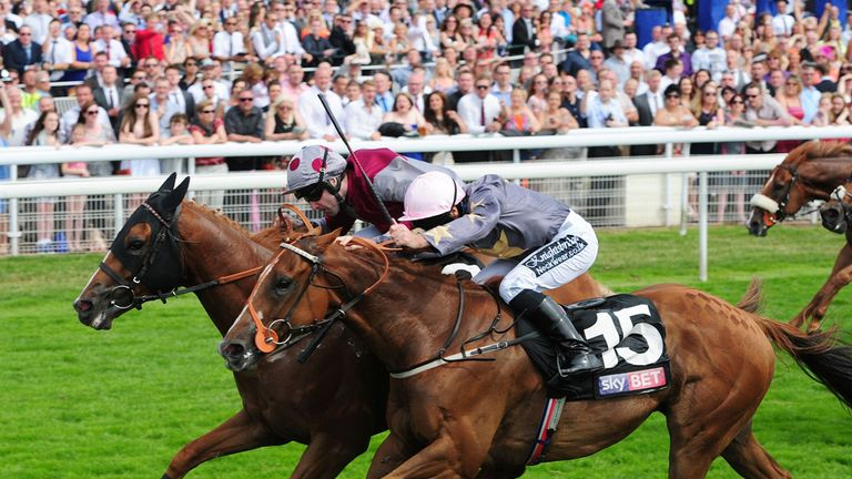 Tropics: Will drop in trip for Glorious Goodwood