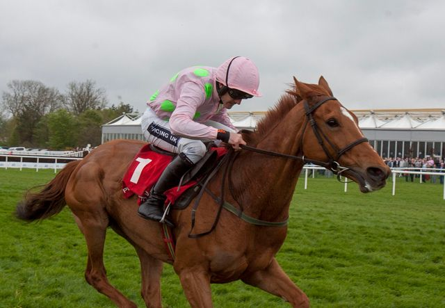 Annie Power: Back to winning ways.