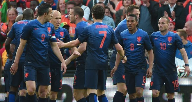 Robin van Persie: Holland captain scored the only goal against Ghana