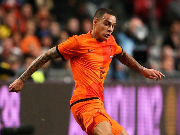 Gregory van der Wiel will not be with the Holland squad in Brazil