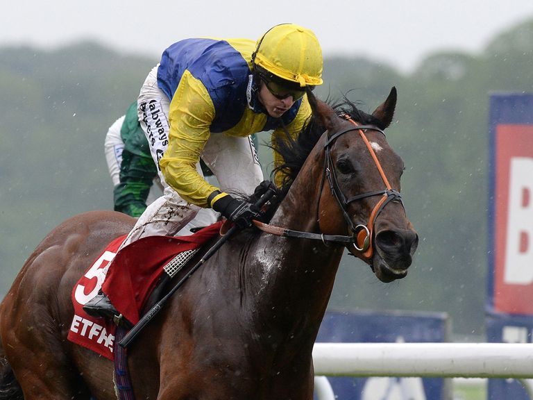 Bear Behind scores at Haydock to earn a new coat for trainer Tom Dascombe