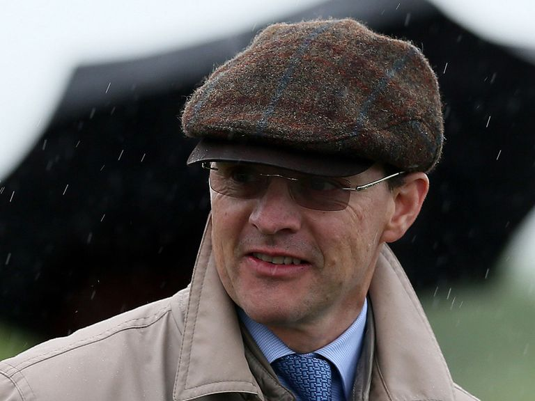 Aidan O'Brien has put a strong team together