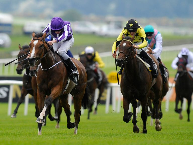 Marvellous: In the Oaks picture