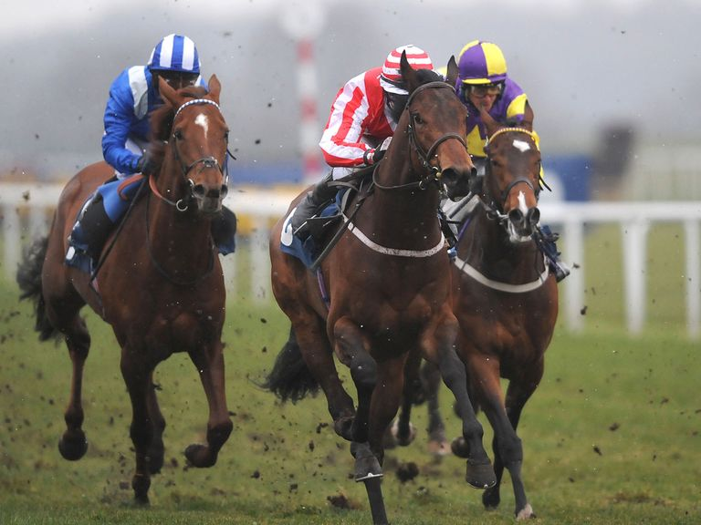 Aetna: Will love the ground at York on Wednesday