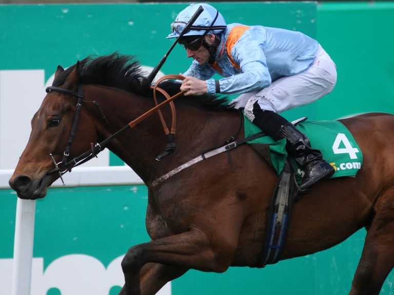 Penitent: Tops the weights for Saturday's big handicap prize.