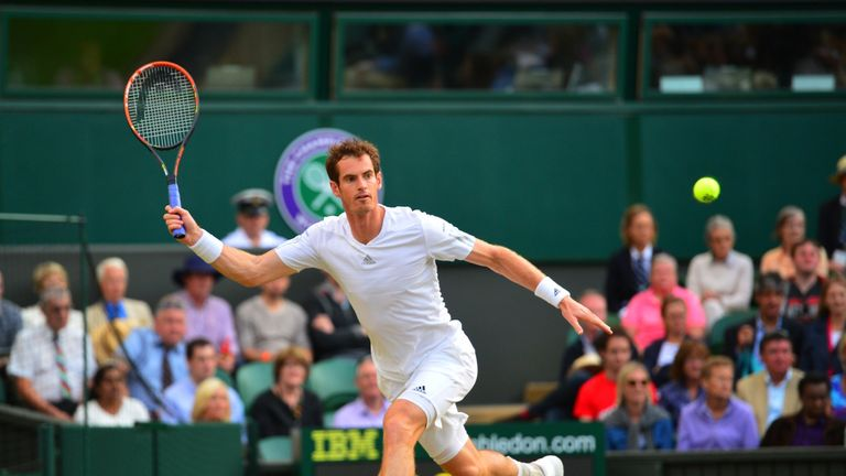 Andy Murray: Enjoyed a perfect start to his Wimbledon defence