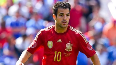 Cesc Fabregas: Former Arsenal captain signed for Chelsea this summer