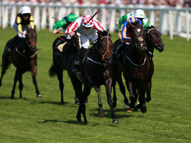 Slade Power: Matched stablemate Sole Power with a Royal Ascot Group One win of his own