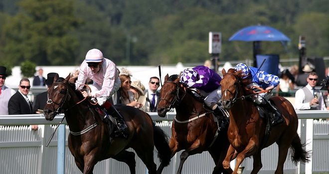 Domination storms to victory in the Ascot Stakes
