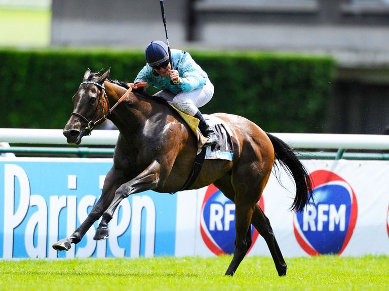 Avenir Certain lines up at Deauville today